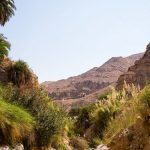 Jordan Itineraries